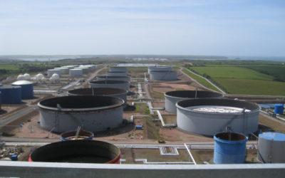 Biodiesel Import Study